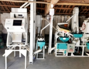 small color sorter at customer factory